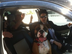 Buster on the set of Fraud Dog