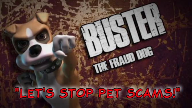 Fraud Dog Call to Action – Let's Stop Pet Scams