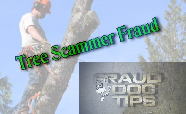 Tree Care Fraud